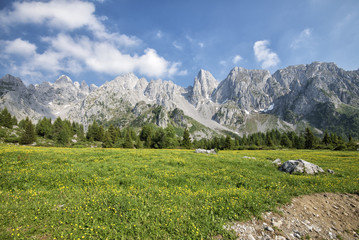 Stunning views of snow-capped mountains and flowering fields on a summer day