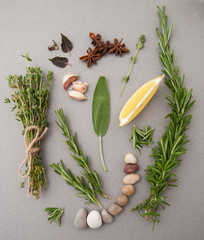 Various spicy herbs on a gray table..