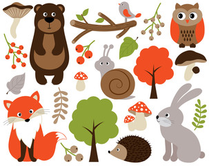 Vector Forest Animals Set. Vector Woodland Animals. Forest Animals Vector Illustration.
