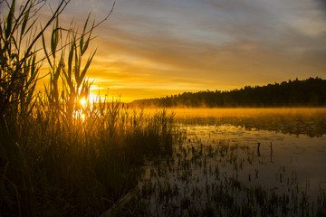 Obraz Summer sunset - fototapety do salonu