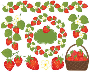 Vector Strawberries Set Included Basket, Wreath, Frame and Flowers Vector Strawberry.