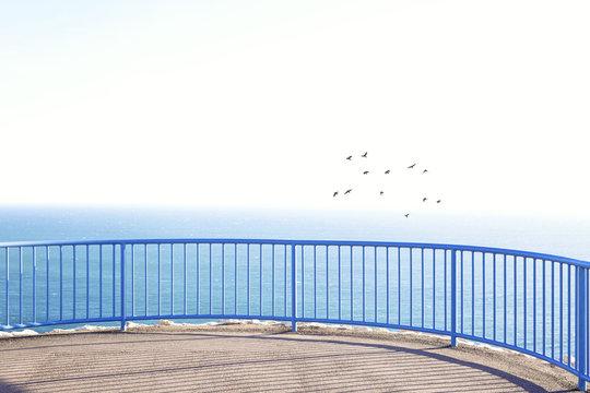 Birds flying over ocean, peaceful scenery