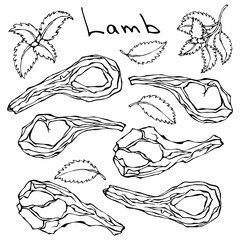 Raw Lamb Chop Ribs Set. Realistic Vector Illustration Isolated Hand Drawn Doodle or Cartoon Style Sketch. Fresh Meat Cuts.