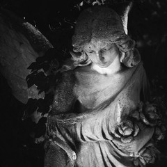 golden angel in the sunlight on a dark background