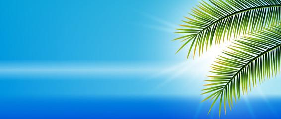 Hintergrund, Meer , Wasser, Palmen