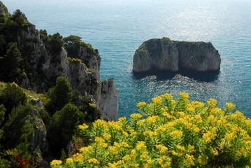 Capri, scoglio del Monacone