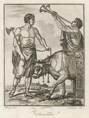 Roman Bull Sacrificed