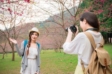 Beauty modern girlfriends  sightseeing sakura