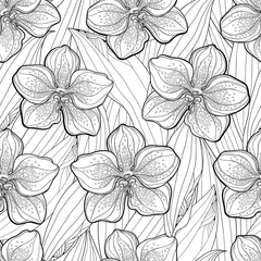 Vector seamless pattern with outline Vanda orchid flower and leaves on the white background. Floral pattern with Vanda tropical flower in contour style for exotic summer design and coloring book.