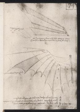 Leonardo Wings. Date: circa 1500