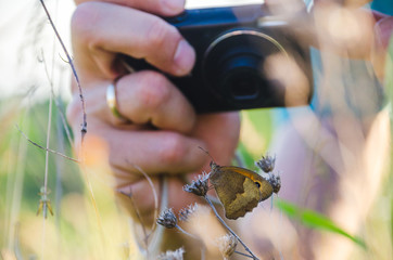 Photographer's hands taking photo of a butterfly with the small photo camera