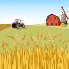 Village with wheat  field and tractor