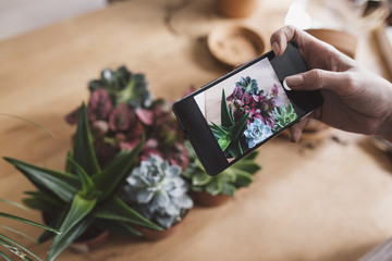 Hand of unrecognisable woman florist taking photo of plants in pots with cell phone.