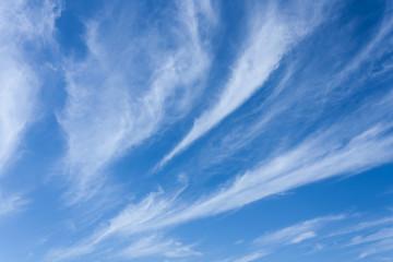 Wispy White Clouds