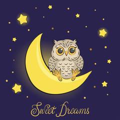 Cute cartoon owl on the moon. Sweet dreams vector illustration