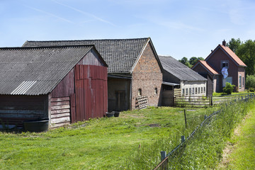 Farm and barns