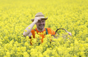 Man farmer in a field with yellow flowers.