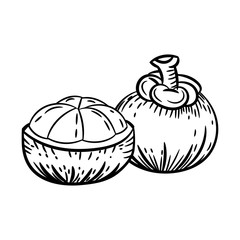 hand drawn sketch of mangosteen isolated black and white cartoon vector illustration for coloring book