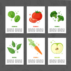 Banner design template with vegetable decoration. Set card with the decor of healthy, juicy fruit. Menu template with space for text with herb, berry and vegetarian food. Vector.