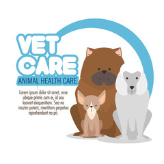 veterinary pet clinic logo vector illustration graphic design