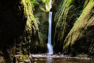 Waterfall in Oneonta Gorge, Oregon, United States