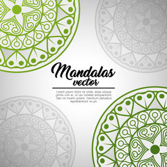 mandala vintage template  vector illustration graphic design