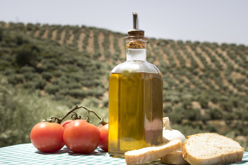 Tomates, aceite de oliva y pan con fondo de olivos