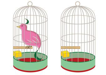 鳥かごと珍しい鳥