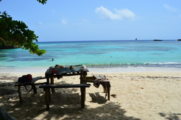 Image result for winnifred beach