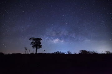 Milky Way and silhouette of tree. Long exposure photograph.With grain