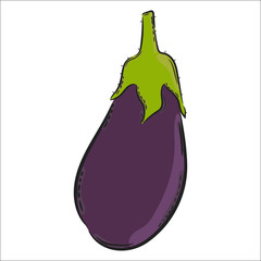 Vector hand drawn illustration. Isolated eggplant. Detailed vegetarian food drawing. Farm market product.