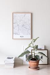 Poster, Magazine und Zimmerpflanzen in Berlin