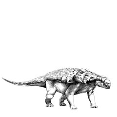 dinosaur in full growth stegosaurus Armadillo with spikes on the back, sketch vector graphics black and white drawing