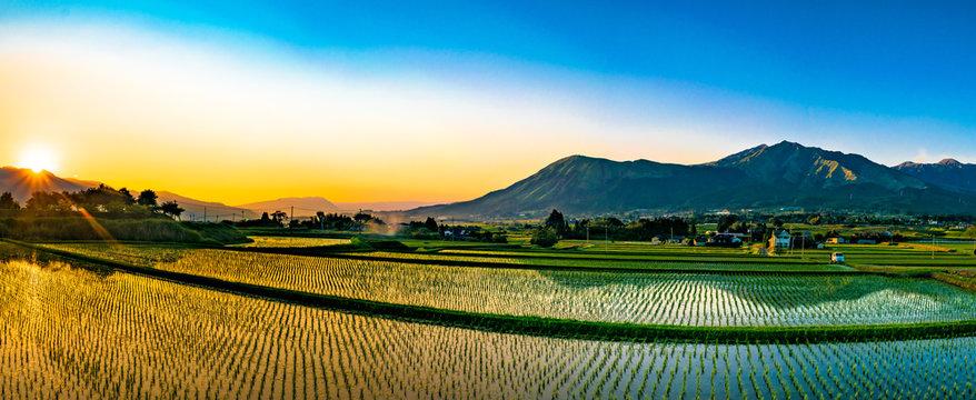 南阿蘇村_田植え後の田んぼに映える夕陽と阿蘇の風景