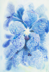 Abstract watercolor original painting blue color of vanda coerulea flower