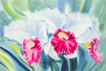 Abstract watercolor original painting white,pink color of orchid  flowers  and green leaves of blue color background.