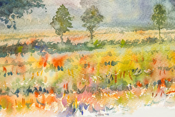Watercolor original landscape painting yellow color of rice field and blue background