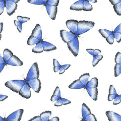 Watercolor seamless pattern with tropical blue butterfly isolated on white background.