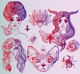 A large set of art tattoos - gothic style. Ideas for a poster on Halloween. Creative portraits of girls. Disturbing Sphinx, unusual flowers and insects