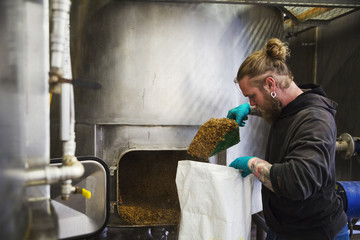 Man scraping shovelling spent grain from a large kettle into a bag in a brewery.