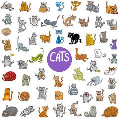 cartoon cat characters big set