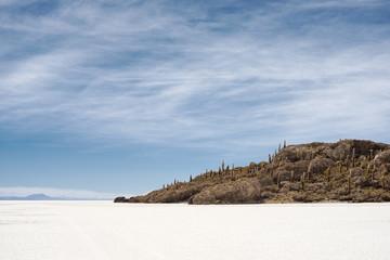 Small island with cactuses on Salar de Uyuni, Bolivia