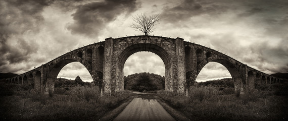 Old bridge and lonely tree