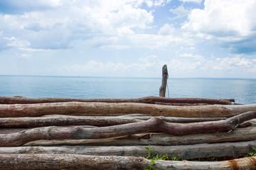 Old Chopped Trees Logs At Sea Coast Line