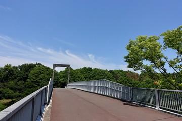 初夏の散歩