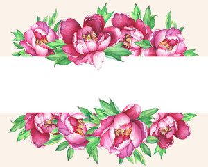 Banner with flowering pink peonies, isolated on  peach background. Watercolor hand drawn painting illustration.