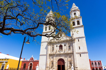 Fototapete - Campeche Cathedral View