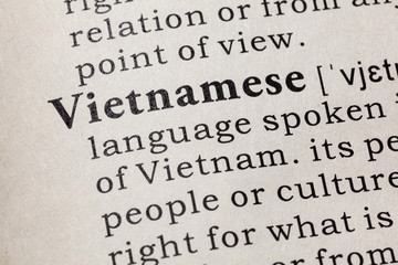 definition of Vietnamese