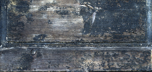 old wood plank texture close view