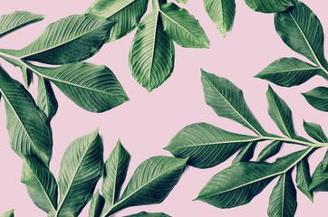 green leaf pattern on pink background